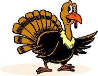 phpT40p6P_wild-turkey-logo